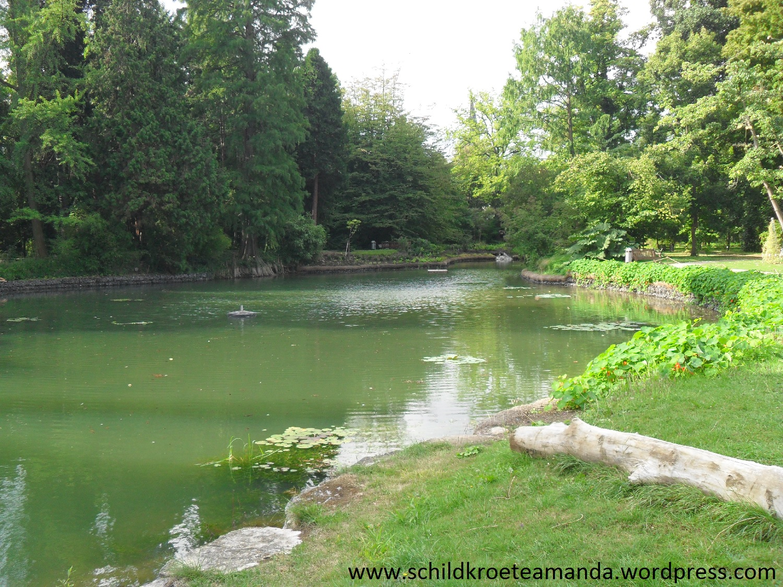 Melbweiher botanischer Garten Bonn. Villa Amanda der Schildkrötenblog
