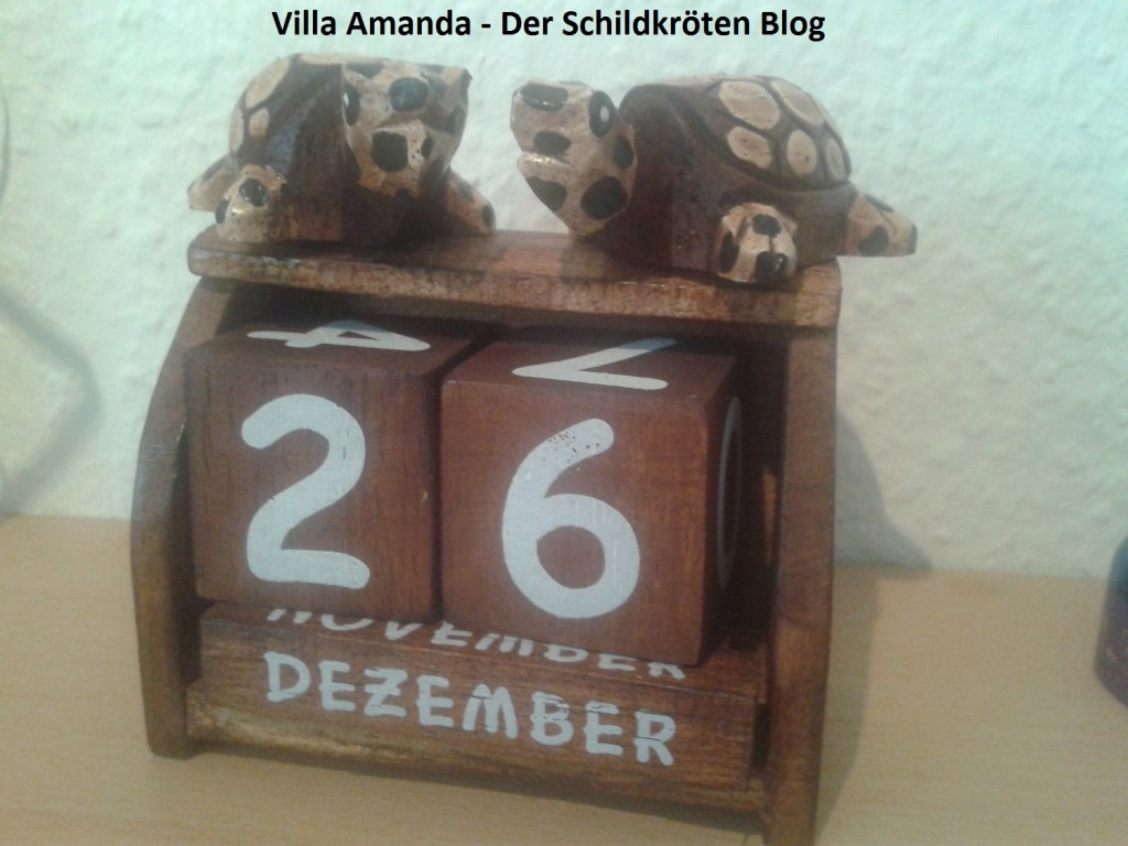 Schildkröten Kalender